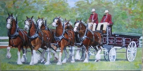 Barra Lea Team of Clydesdales.
