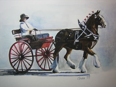 single carriage, clydesdale